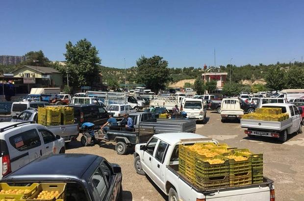 Mut Sebze ve Meyve Toptancı Hali ihtiyaca cevap vermiyor Mut Belediye Başkanı Volkan Şeker, Mersin Büyükşehir Belediyesi Başkanı Vahap Seçer'den yeni hal yapılmasını istedi