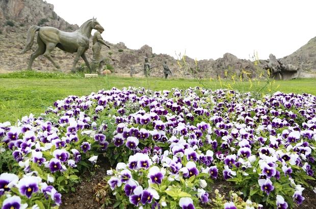 Festival alanı çiçeklerle donatılıyor
