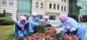 Osmangazi 200 bin çiçek ile renklenecek
