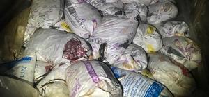Van'da 10 bin 500 kilo kaçak avlanmış balık ele geçirildi