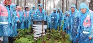 Ormanda yağmur altında seminer