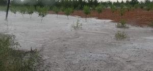 Üzüm bağlarından akan sel suları şelaleyi anımsattı Bekilli ilçesinde yoğun yağmur ve dolu yağışı etkili oldu Yağış ekili tarım arazileri ile üzüm bağlarına zarar verdi