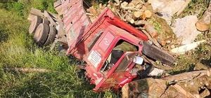 Tomruk yüklü kamyon uçuruma yuvarlandı: 2 yaralı
