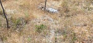 Haber alınamayan çoban dağda ölü olarak bulundu