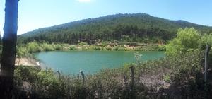 Çam ormanı içinde saklı cennet, Belenova mesire alanı