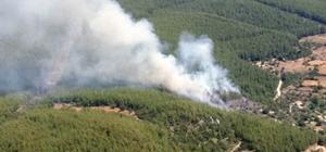 Milas'ta orman yangını Kısa sürede kontrol altına alınan yangında 1 hektar orman ve 20 dekar ziraat arazisi zarar gördü