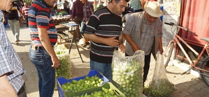 Aydın'da ilek fiyatları fırladı Sezon başında kilosu 5 lira olan ilek 30 liraya kadar yükseldi