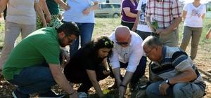 Engelli bireyler, üreterek kazanacak Menteşe Belediyesi ve Muğla Zihinsel Engelliler Derneği tarafından başlatılan sosyal sorumluluk projesi ile engelli bireyler üreterek kazanacak.