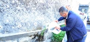 Tohma'ya 60 bin aynalı sazan balık bırakıldı