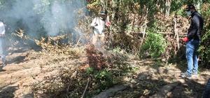 Hevsel bahçelerindeki uyuşturucu operasyonu tamamlandı