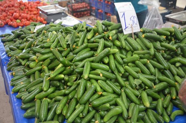 """Salatalık tarlada 30 kuruş pazarda 1,5 lira Yüksek fiyattan dert yanan satıcısı İbrahim Yıldız; """"Aradan halciler kalksa müşterilerimiz daha ucuza salata, domates, biber yer"""""""