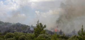 Muğla'da yeni bir orman yangını evleri tehdit ediyor Milas'ta yerleşim alanlarını tehdit eden yangın için itfaiyeden destek istendi