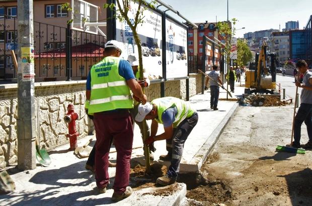 Altınordu'da ağaçlandırma çalışması