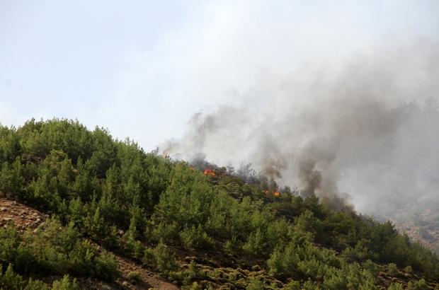Dalaman'daki yangın yeniden aktif hale geldi Rüzgarın etkisiyle aktifleşen yangın kısmen kontrol altında alındı