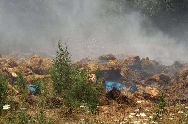 Pazaryeri'nde samanlar alev alev yandı