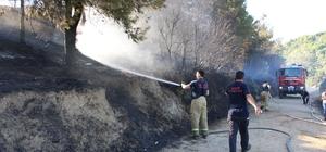 Orman yangın havuzunda yangın paniği
