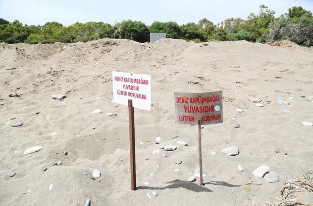 Mezitli Belediyesi, Davultepe 100. Yıl Plajı planına itiraz etti