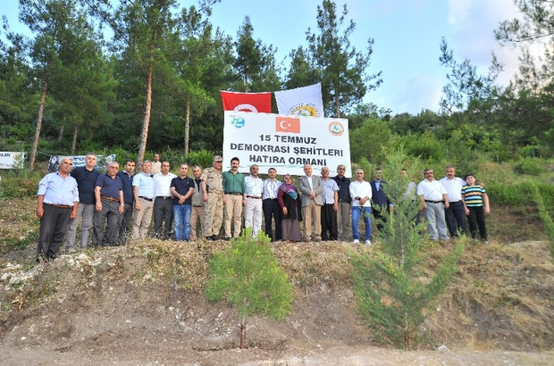 15 Temmuz Demokrasi Şehitleri Hatıra Ormanı'na fidan dikildi