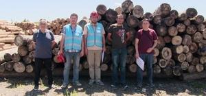 DPÜ AFAMER'in Orman Üretim İşçisi sınavları başladı