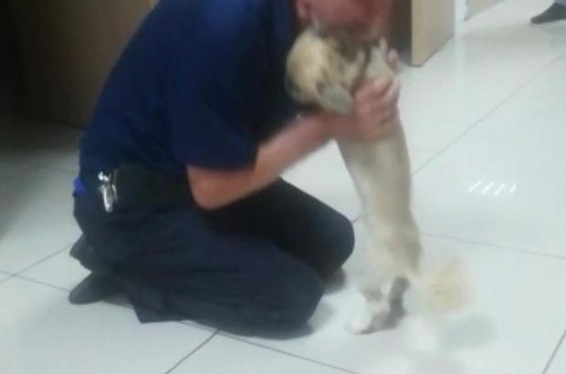 Köpeğine böyle kavuştu Çalınan köpeğine kavuşan yaşlı adam gözyaşlarına boğuldu Parkta çalınan köpek bulundu