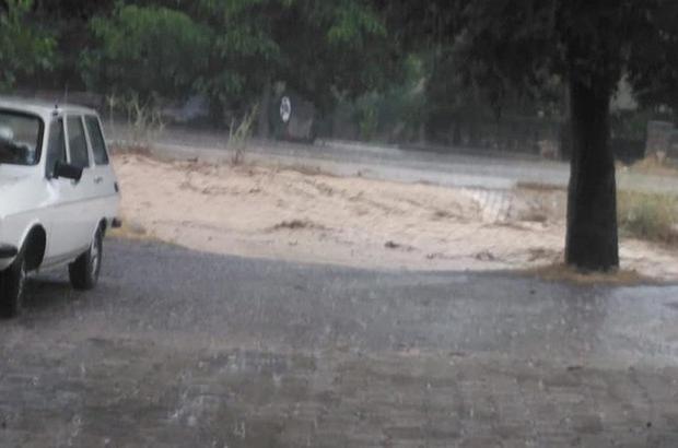 Denizli'nin Acıpayam ilçesinde yola devrilen ağaç trafiği 20 dakika durdurdu