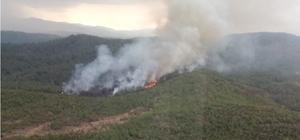 Köyceğiz'de orman yangını Muğla'nın Köyceğiz ilçesinde 2014 yılında yanan sahanın hemen yanında yıldırım düşmesi sonucu yangın çıktı.