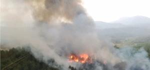 Muğla'da ve Aydın'da 'Yıldırım' yangınları Muğla'da öğle saatlerinde başlayan yağış ile birlikte yıldırım düşmesi sonucu 3 ayrı noktada çıkan orman yangınları kontrol altına alındı.