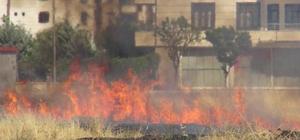 Diyarbakır'da anız ve kurumuş ot yangınları durdurulamıyor
