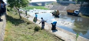 Sarıçam Deresi'nde hummalı temizlik çalışması Temizlik çalışmalarını denetleyen Adana Büyükşehir Belediye Başkanı Zeydan Karalar, dereye atık ve çöp atılmaması konusunda vatandaşlardan duyarlı olmalarını istedi