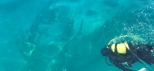 Van Gölü'ndeki Rus batıkları dalış turizmine kazandırılacak