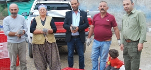 Tokat'ta keneye karşı beç tavuğu dağıtıldı