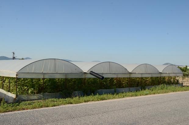 (Özel) Kırkağaç'ta seracılığa ilgi artıyor Üretici daha fazla verim için seracılığa yöneliyor Açık alanda yapılan tarıma göre 3 kat daha fazla ürün alınan seracılık Manisa'nın Kırkağaç ilçesinde yaygınlaşıyor