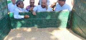Tonlarca nohut çiftçinin elinde kaldı Başkan Dağdelen çiftçinin nohut sorununa el attı