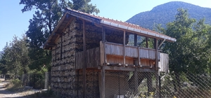 ASAT Yukarı Yazı'ya su götürdü Taş ev 69 yıl sonra suya kavuştu