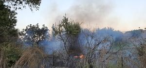 Karpuzlu'da yangın Tarım arazilerinde başlayan yangın büyümeden söndürüldü