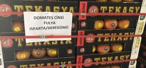 Isparta'dan 3 ülkeye 521 tonluk domates ihracatı Örtü altı üretimin geliştiği Isparta'da domates ve kesme çiçek hasadı başladı