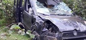 Ordu'da hafif ticari araç fındık bahçesine uçtu: 1 ölü, 5 yaralı