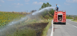 Sürücülerin attığı izmarit makilik alanı yaktı