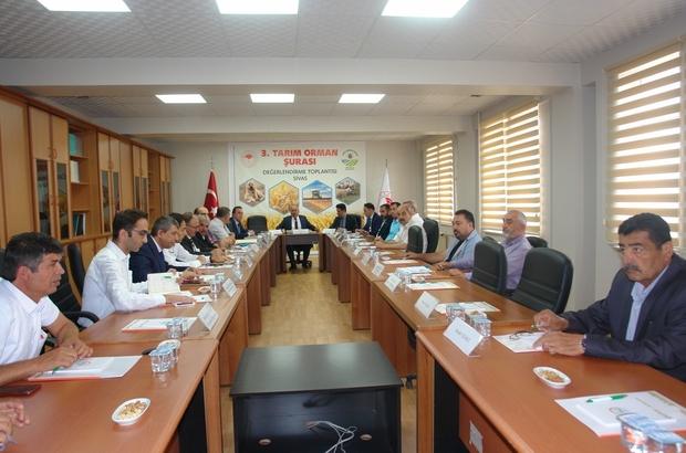 Sivas'ta 3. Tarım Şurası öncesi değerlendirme toplantısı yapıldı Ekim ayında Ankara'da gerçekleştirilecek olan 3. Tarım ve Orman Şurası'na hazırlık amacıyla  Sivas Tarım ve Orman İl Müdürü Seyit Yıldız'ın başkanlığında 'Şura Paydaş Toplantısı' düzenlendi