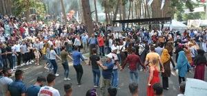 Bal ve Kültür Festivali büyük bir coşkuyla gerçekleşti