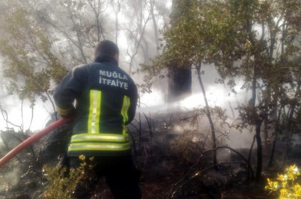 Yangına itfaiyeden zamanında müdahale Muğla'nın Menteşe ilçesinde çıkan orman yangını Muğla Büyükşehir Menteşe İtfaiye ekipleri ile orman ekiplerinin zamanında müdahalesi ile söndürüldü.