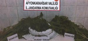 Afyon'da 1 kilo 5 gram esrar, 80 kök kenevir elegeçirildi