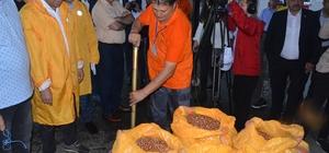 """TMO fındık alımına başladı Ordulu üreticiler, sabahın ilk ışıklarında Toprak Mahsulleri Ofisi'nin yolunu tuttu TMO Genel Müdürü Ahmet Güldal: """"200 bin ton civarında depo hazırlığı yapıldı, 33 noktada 60 ekip alım yapacak"""" """"TMO'nun rakamları referans fiyattır"""""""