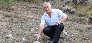 Sivas'ta 55 milyon yıllık deniz canlısı fosili bulundu Sivas'ta geçtiğimiz hafta bir çoban tarafından bulunan ve buğday tanelerine ait olduğu düşünülen fosillerin yaklaşık 50-55 milyon yıllık tek hücreli deniz canlılarına ait fosiller olduğu anlaşıldı