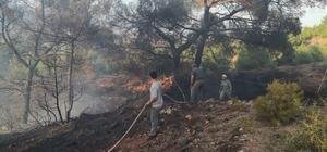 Eskişehir'de çıkan orman yangını büyümeden söndürüldü