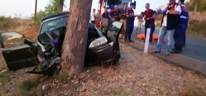 İzmir'de Otomobil ağaca çarptı: 3 ölü, 1 yaralı