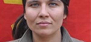 Öldürülen terörist zırhlı araca EYP'li saldırının faili çıktı