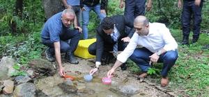 4 bin alabalık yavrusu suyla buluştu