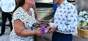 Karaburun yeniden nergis kokacak Başkan Soyer, Karaburunlu nergis üreticilerinin yüzünü güldürdü