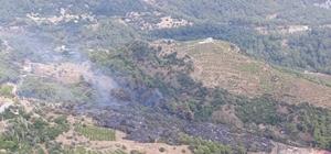 Antalya'daki orman yangını kontrol altına alındı Yangın 1 hektarlık alanda etkili oldu